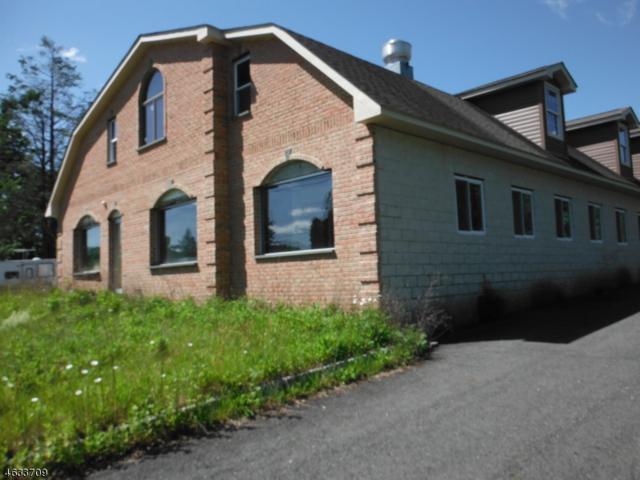463 Us Highway 206, Frankford Twp., NJ 07826 (MLS #3313748) :: The Dekanski Home Selling Team