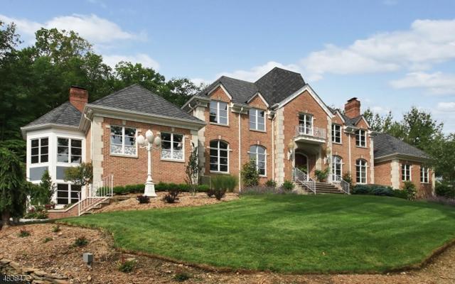27 Shinnecock Trl, Franklin Lakes Boro, NJ 07417 (MLS #3318300) :: The Dekanski Home Selling Team