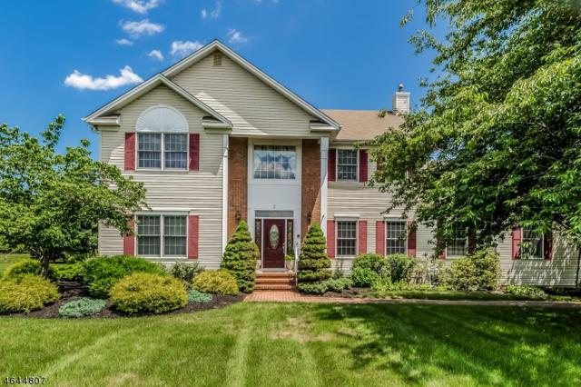 3 Ryerson Rd, Readington Twp., NJ 08822 (MLS #3324432) :: The Dekanski Home Selling Team