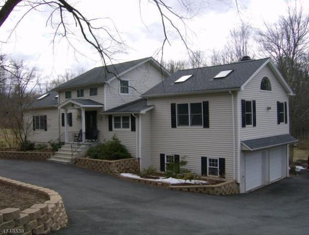 425 Pine Brook Rd, Lincoln Park Boro, NJ 07035 (MLS #3329833) :: The Dekanski Home Selling Team