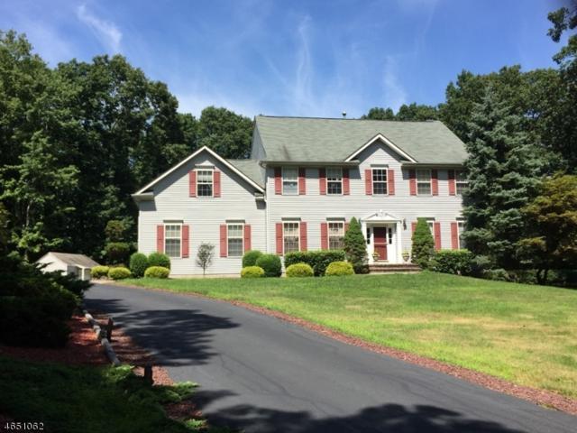 92 Skytop Rd, Andover Twp., NJ 07860 (MLS #3329964) :: The Dekanski Home Selling Team