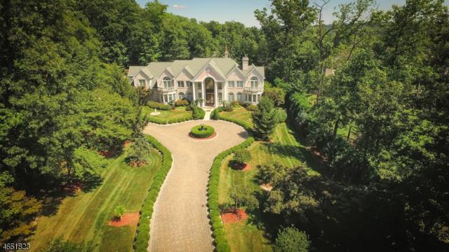 18 Quail Run, Warren Twp., NJ 07059 (MLS #3330709) :: The Dekanski Home Selling Team