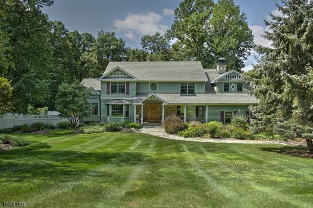 3 Knollwood Ter, Chester Twp., NJ 07930 (MLS #3333485) :: The Dekanski Home Selling Team