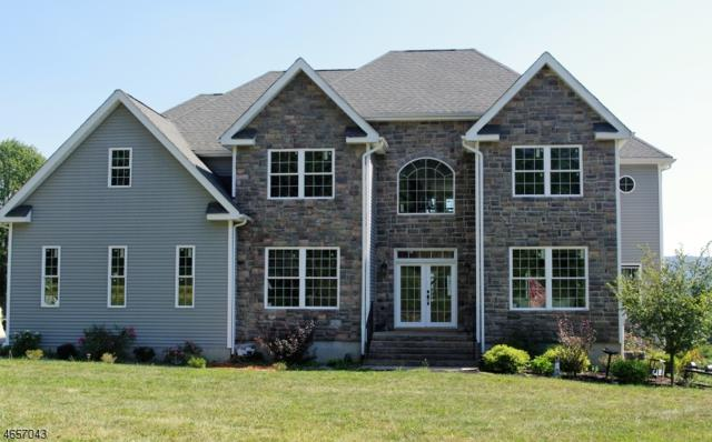 6 Anthony Ct, Hardyston Twp., NJ 07419 (MLS #3335635) :: The Dekanski Home Selling Team