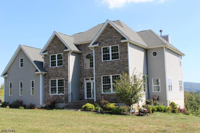 3 Anthony Ct, Hardyston Twp., NJ 07419 (MLS #3335637) :: The Dekanski Home Selling Team