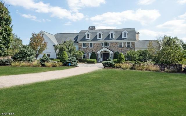 6 Whispering Meadow Dr, Morris Twp., NJ 07960 (MLS #3336055) :: The Dekanski Home Selling Team