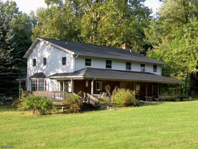 200 County Road 579, Alexandria Twp., NJ 08804 (MLS #3337828) :: The Dekanski Home Selling Team