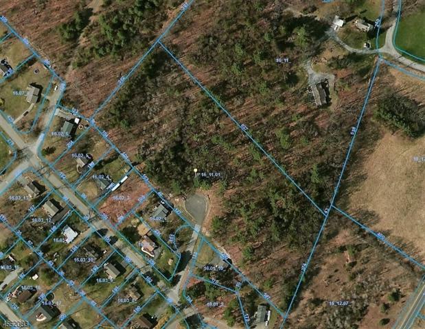 27 Millville Rd (Riverview), Montague Twp., NJ 07827 (MLS #3340196) :: The Dekanski Home Selling Team