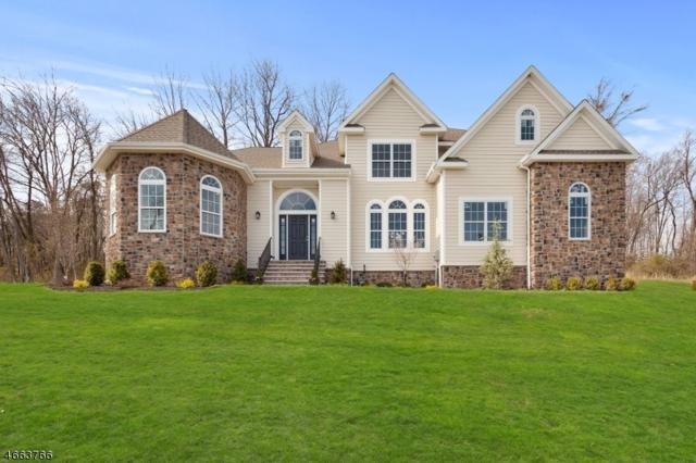 18 Glacier Way, Union Twp., NJ 08867 (MLS #3341829) :: The Dekanski Home Selling Team
