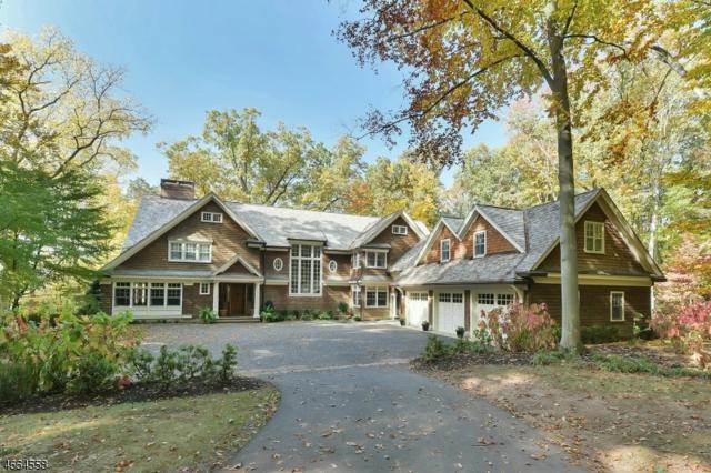 203 Blue Mill Rd, Harding Twp., NJ 07976 (MLS #3343289) :: The Dekanski Home Selling Team
