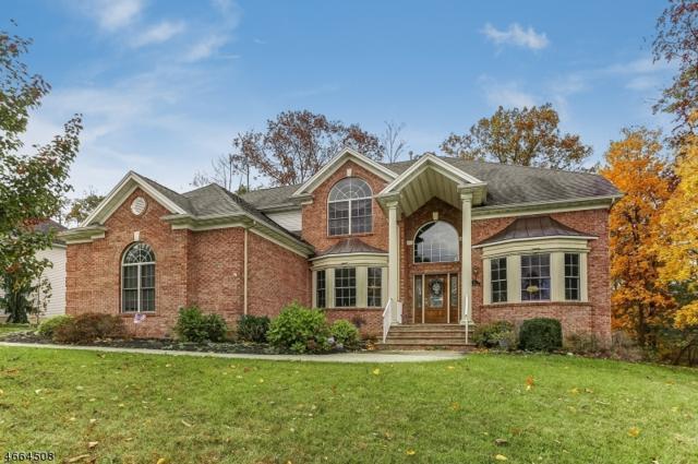2 Hunter Dr, Mount Olive Twp., NJ 07828 (MLS #3344166) :: The Dekanski Home Selling Team