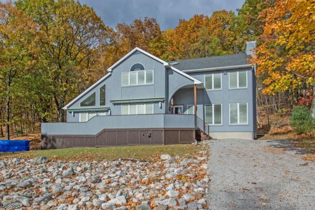 21 Mountain Ave, Frankford Twp., NJ 07826 (MLS #3345634) :: The Dekanski Home Selling Team