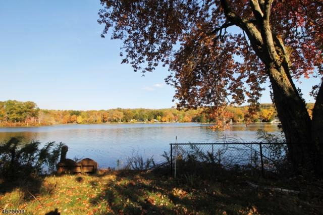 103 Lake Dr, Byram Twp., NJ 07874 (MLS #3347837) :: The Dekanski Home Selling Team