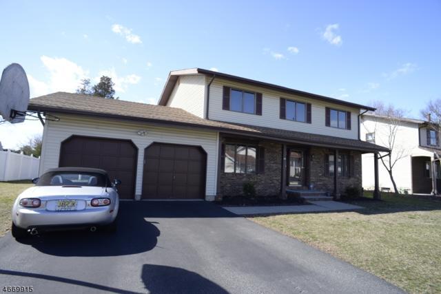 20 Agawam Dr, Wayne Twp., NJ 07470 (MLS #3349129) :: The Dekanski Home Selling Team