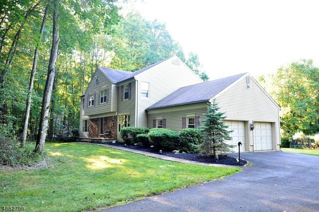 78 Wehrli Rd, Fl, Washington Twp., NJ 07853 (MLS #3352570) :: The Dekanski Home Selling Team