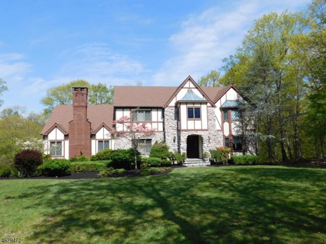 44 Alize Dr, Kinnelon Boro, NJ 07405 (MLS #3356516) :: The Dekanski Home Selling Team