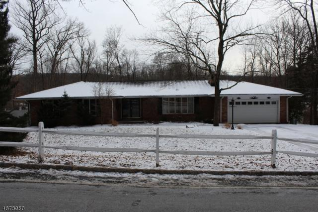 74 Radtke Rd, Randolph Twp., NJ 07869 (MLS #3356817) :: The Dekanski Home Selling Team