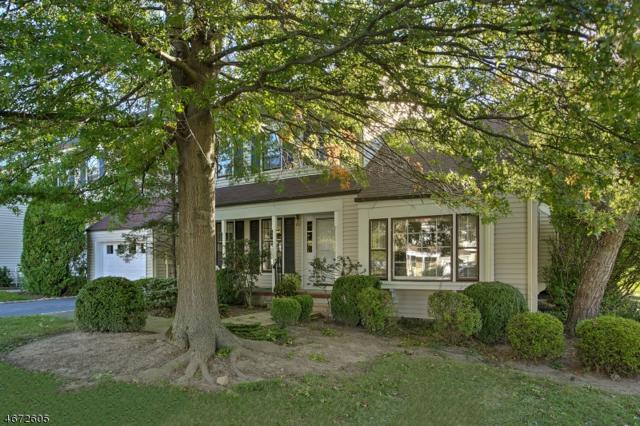 65 Galway Dr, Mendham Boro, NJ 07945 (MLS #3357269) :: The Dekanski Home Selling Team
