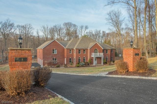 9 Douglas Dr, Sparta Twp., NJ 07871 (MLS #3357655) :: The Dekanski Home Selling Team