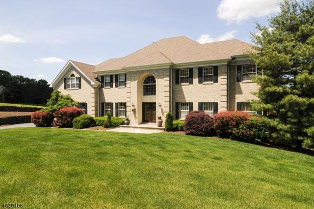 18 Jarombek Dr, Montville Twp., NJ 07082 (MLS #3357777) :: The Dekanski Home Selling Team