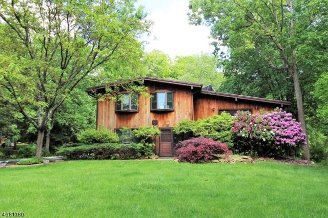 167 Forest Lake Dr N, Byram Twp., NJ 07821 (MLS #3357976) :: The Dekanski Home Selling Team