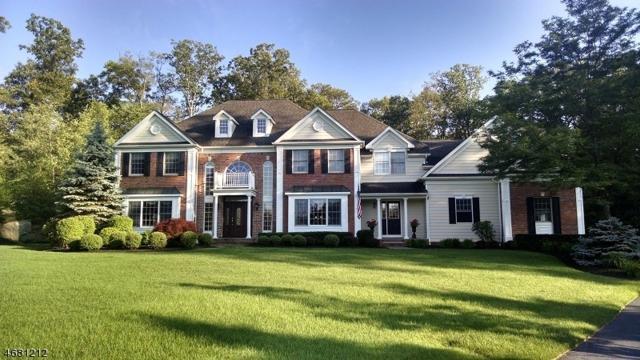 1 Windemere Way, Sparta Twp., NJ 07871 (MLS #3358527) :: The Dekanski Home Selling Team