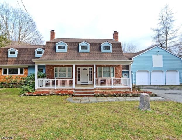 63 Meggins Rd, Rockaway Twp., NJ 07866 (MLS #3359626) :: The Dekanski Home Selling Team