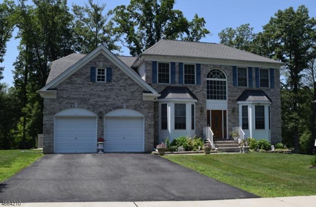 7 Red Maple Ln, Mount Olive Twp., NJ 07836 (MLS #3360425) :: The Dekanski Home Selling Team