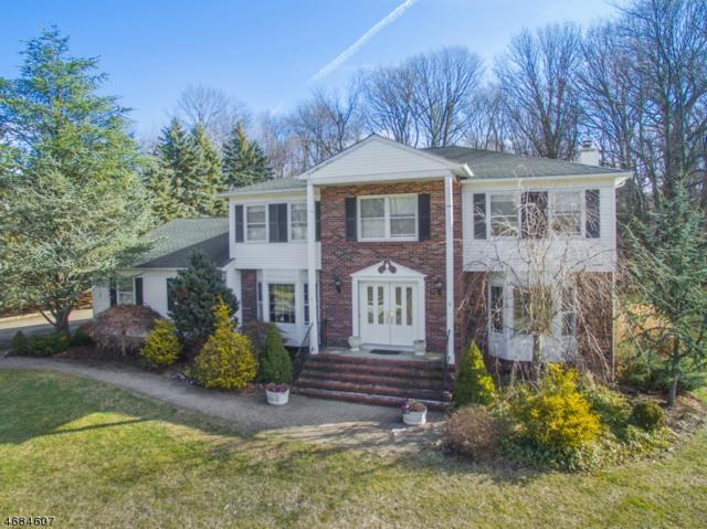 3 Merrimac Rd, Randolph Twp., NJ 07869 (MLS #3360928) :: The Dekanski Home Selling Team