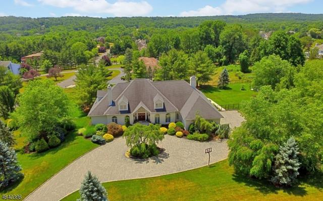 22 Springdale Ln, Warren Twp., NJ 07059 (MLS #3361743) :: The Dekanski Home Selling Team
