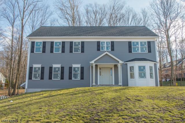 30 Musiker Ave, Randolph Twp., NJ 07869 (MLS #3361928) :: The Dekanski Home Selling Team