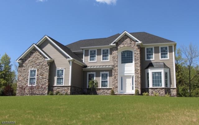 2 Dale Dr, Raritan Twp., NJ 08822 (MLS #3362257) :: The Dekanski Home Selling Team