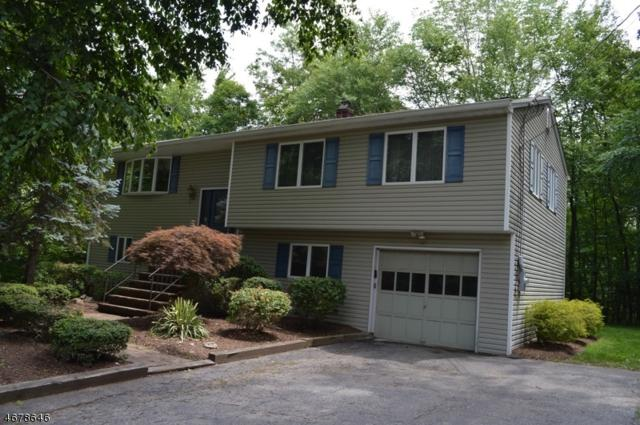 35 Reality Dr, Kinnelon Boro, NJ 07405 (MLS #3362784) :: The Dekanski Home Selling Team