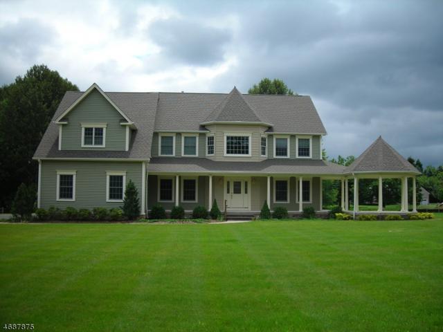 464 Route 513, Lebanon Twp., NJ 07830 (MLS #3363845) :: The Dekanski Home Selling Team