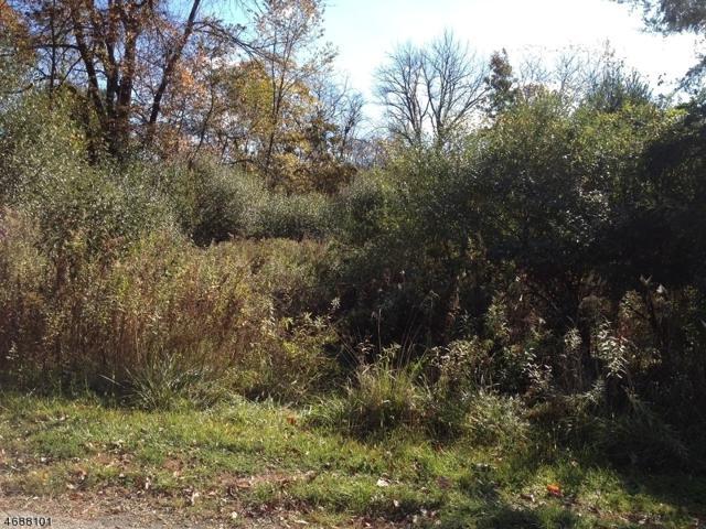 316 Wagon Wheel Rd, Montague Twp., NJ 07827 (MLS #3363951) :: The Dekanski Home Selling Team
