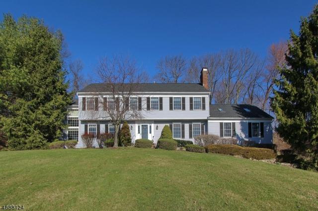 11 Chestnut Dr, Chester Twp., NJ 07930 (MLS #3364005) :: The Dekanski Home Selling Team