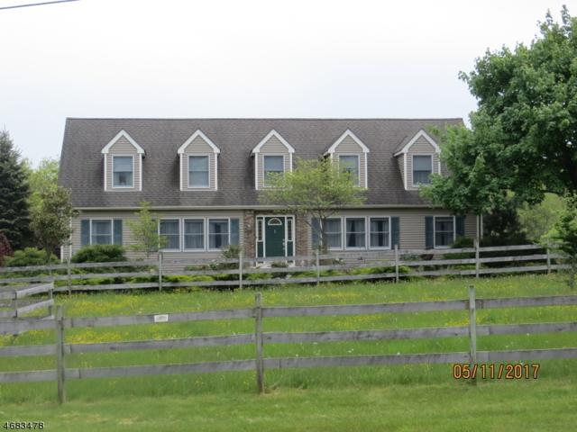 34 Larsen Rd, East Amwell Twp., NJ 08551 (MLS #3365713) :: The Dekanski Home Selling Team