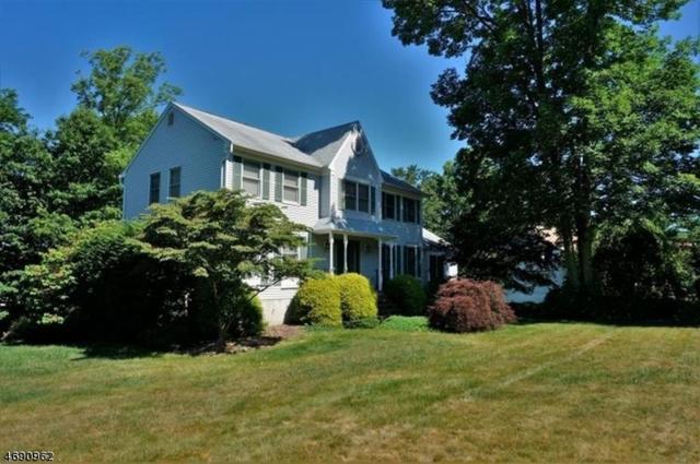 8 Trade Winds Dr, Randolph Twp., NJ 07869 (MLS #3366516) :: The Dekanski Home Selling Team