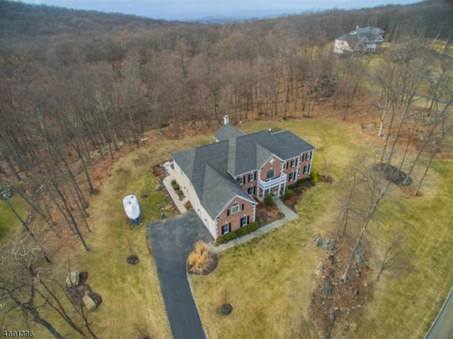 22 Crown View Ct, Sparta Twp., NJ 07871 (MLS #3367063) :: The Dekanski Home Selling Team