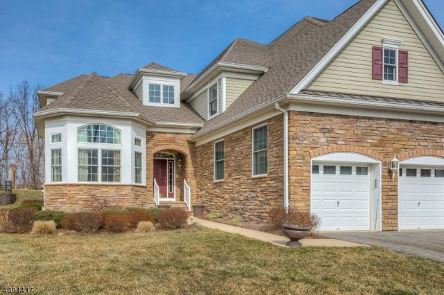 2 Hundt Pl, West Orange Twp., NJ 07052 (MLS #3367557) :: The Dekanski Home Selling Team