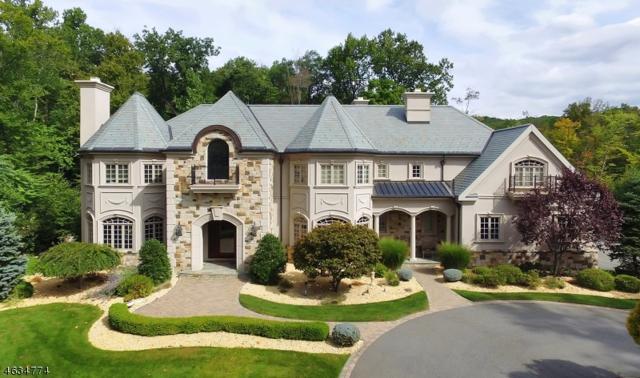 12 Pond Vw, Montville Twp., NJ 07045 (MLS #3367605) :: The Dekanski Home Selling Team