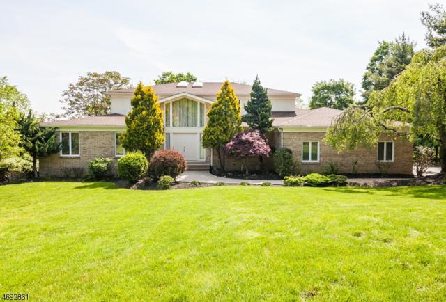 159 Eileen Dr, Cedar Grove Twp., NJ 07009 (MLS #3368255) :: The Dekanski Home Selling Team
