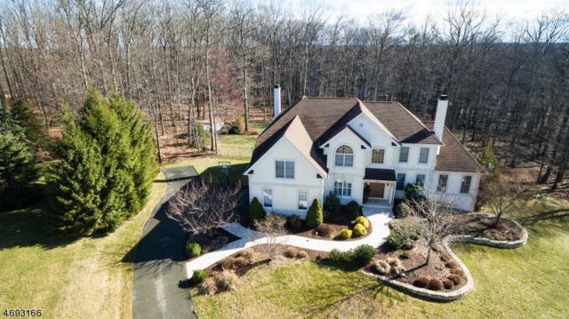 18 Evita Ter, Washington Twp., NJ 07853 (MLS #3368550) :: The Dekanski Home Selling Team