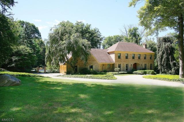 46 Post Kennel Rd, Bernardsville Boro, NJ 07931 (MLS #3368635) :: The Dekanski Home Selling Team