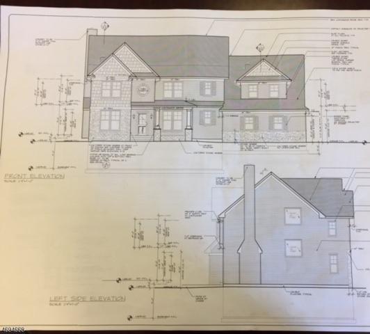 9 Moosepac Ln, Jefferson Twp., NJ 07438 (MLS #3369884) :: The Dekanski Home Selling Team