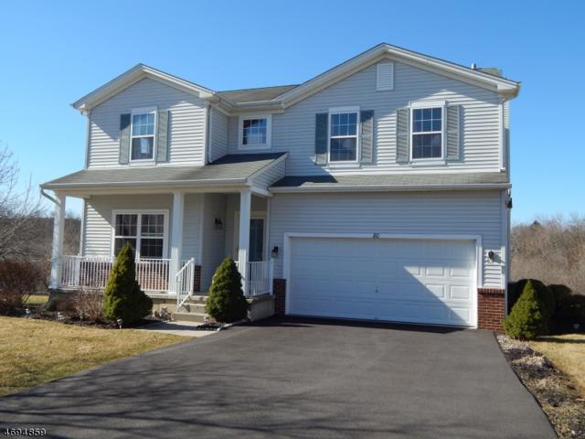 80 Alvin Sloan Ave, Washington Boro, NJ 07882 (MLS #3370495) :: The Dekanski Home Selling Team