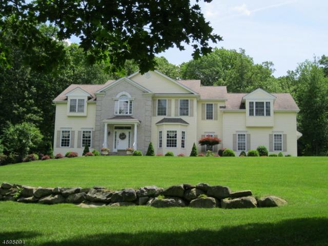 7 Camelot Dr, Byram Twp., NJ 07821 (MLS #3370752) :: The Dekanski Home Selling Team