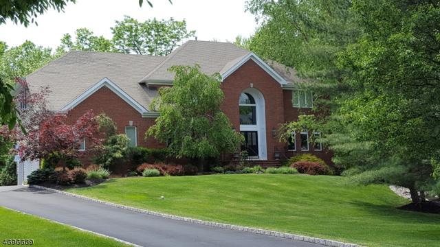 62 Nicole Ter, Bridgewater Twp., NJ 08807 (MLS #3371962) :: The Dekanski Home Selling Team