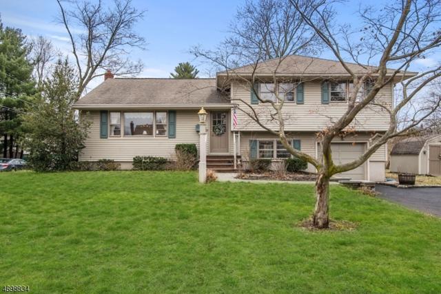 31 Mill Rd, Morris Twp., NJ 07950 (MLS #3373681) :: The Dekanski Home Selling Team