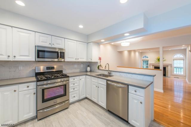 64 N Aberdeen Dr, Mendham Boro, NJ 07945 (MLS #3374153) :: The Dekanski Home Selling Team